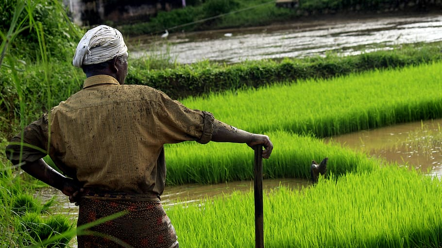 ICICI Bank helps farmers across India get loans