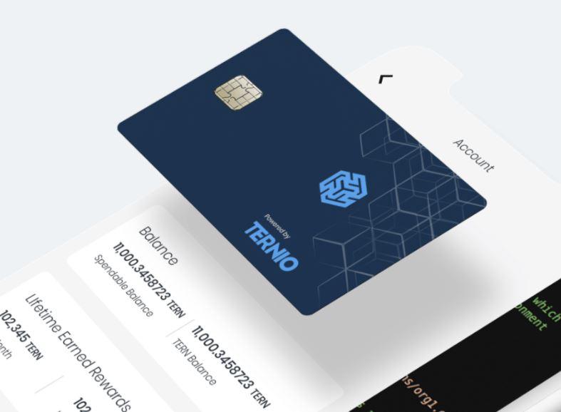 Ternio card